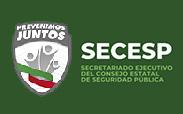 Secretariado Ejecutivo del Consejo Estatal de Seguridad Pública